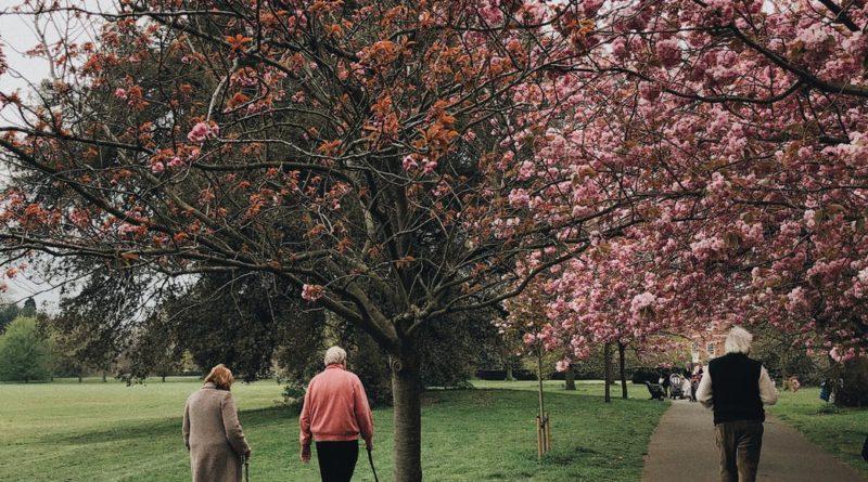Casal de idosos caminhando - queda em idosos